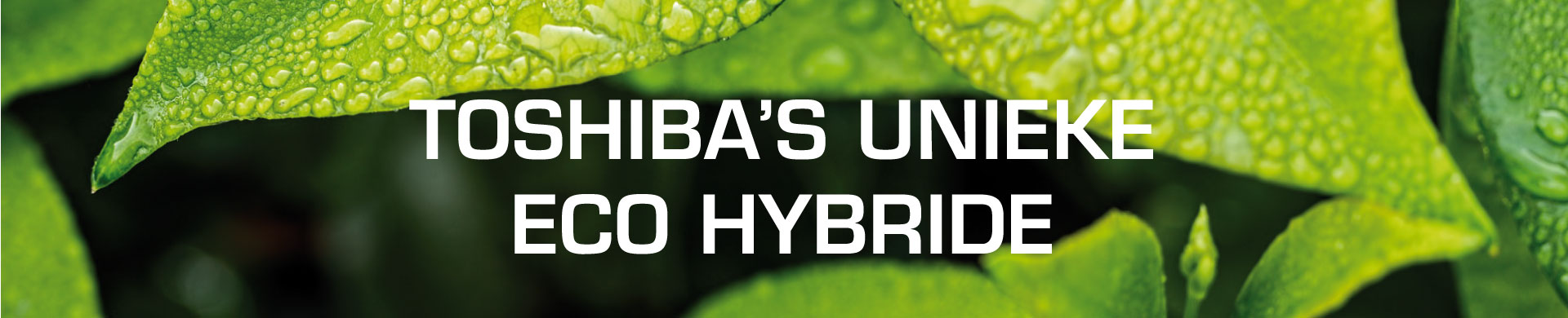 Banner Eco Hybride